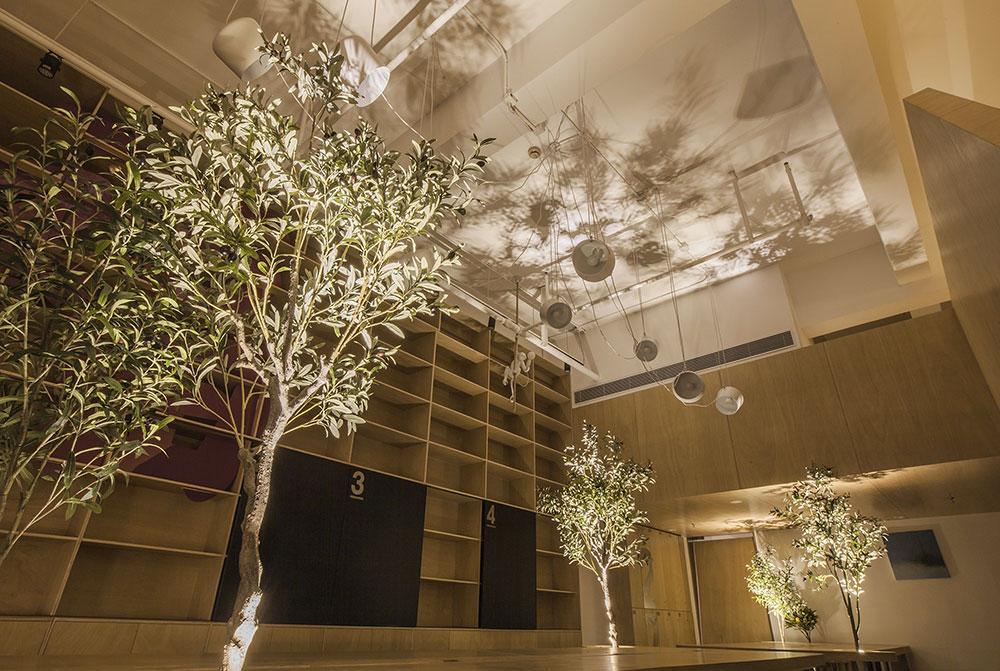 bureaux végétalisés lumière towodesign