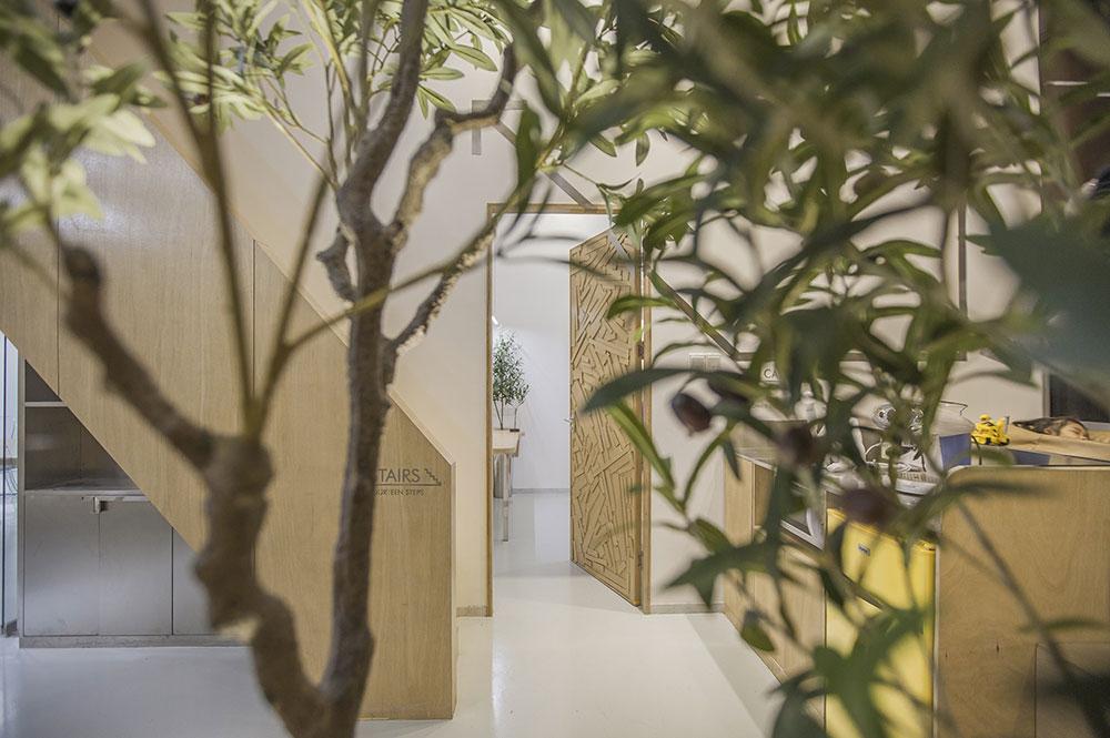 bureaux végétalisés plantes