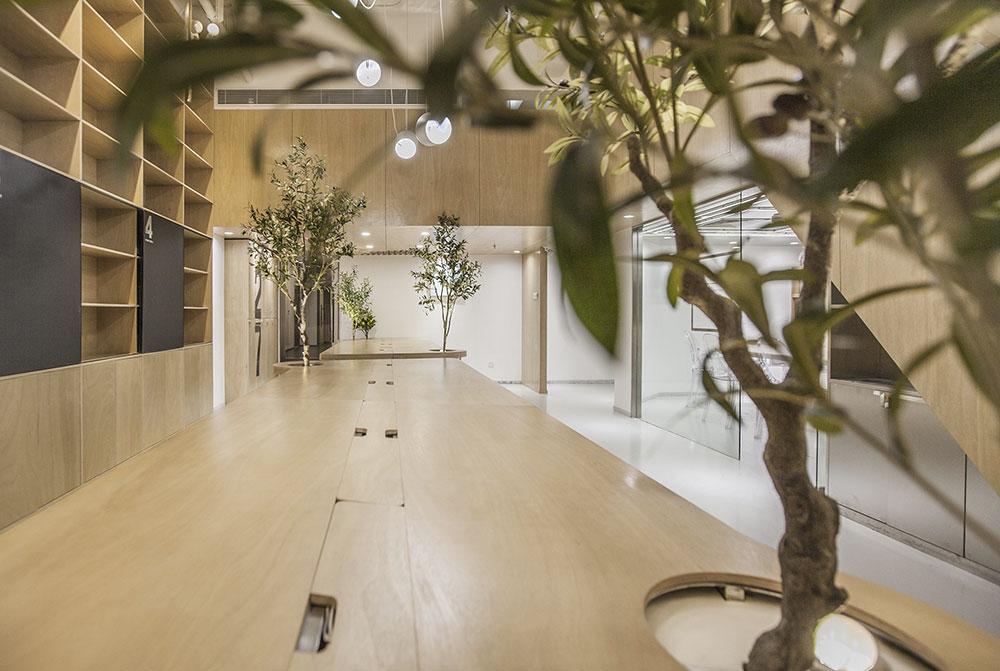bureaux végétalisés towodesign