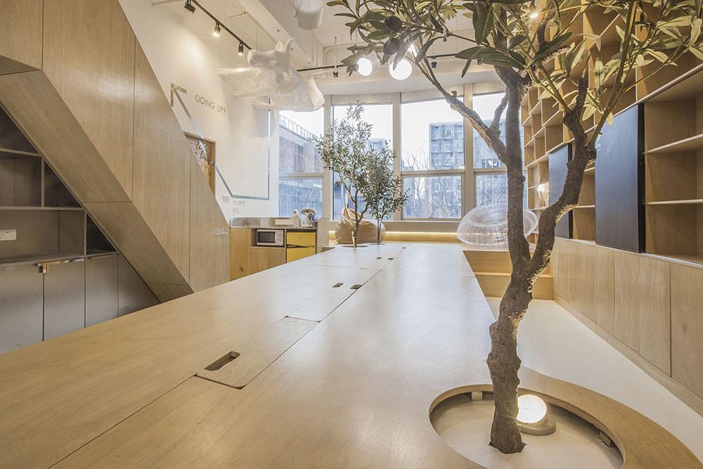 towodesign bureaux végétalisés