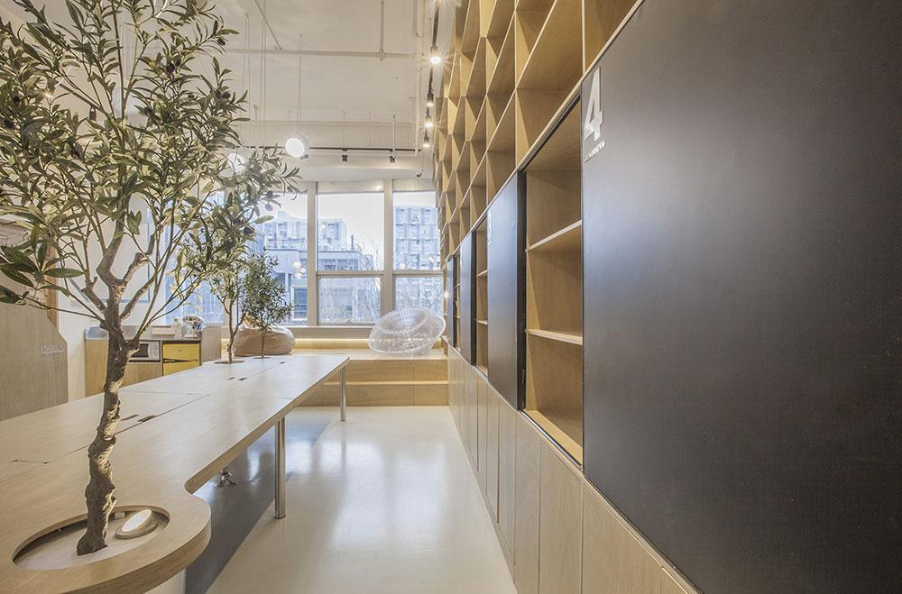towodesign végétalisation des bureaux