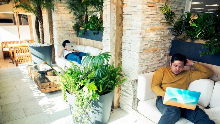 patio jardin bureaux indeed tokyo